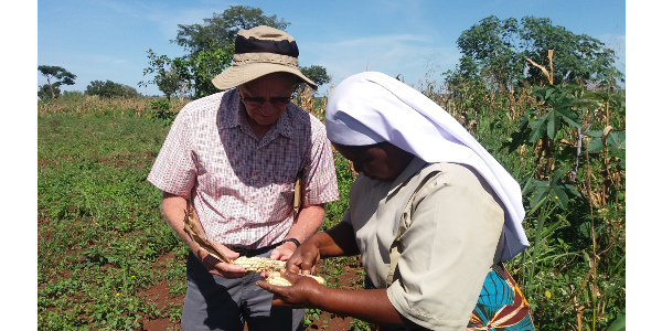 Ransom discusses corn yield with one of the Little Sisters of Mary Immaculate in Uganda. (NDSU Photo)