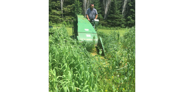 Pea and oat trial at a cooperating farm in Michigan's Upper Peninsula in 2017. (Photo by Monica Jean, MSU Extension)Pea and oat trial at a cooperating farm in Michigan's Upper Peninsula in 2017. (Photo by Monica Jean, MSU Extension)