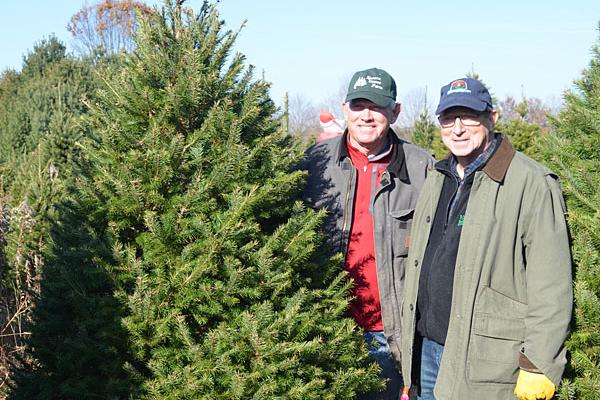 NJDA kicks off Christmas tree season