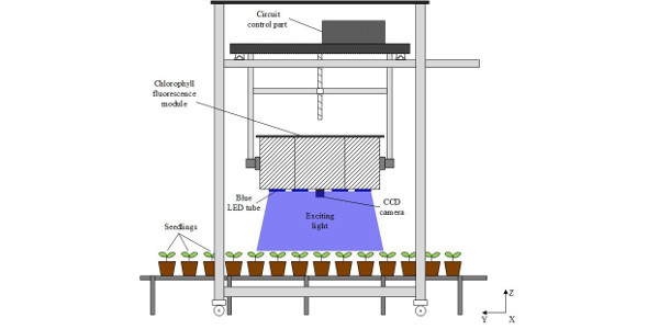 A new fluorescence imaging system uses a large imaging area to provide information about plant health. It is designed for use in greenhouses or in the field and could one day enable farm machinery that automatically responds to plants showing stress. (Image Credit: Haifeng Li, Zhejiang University)