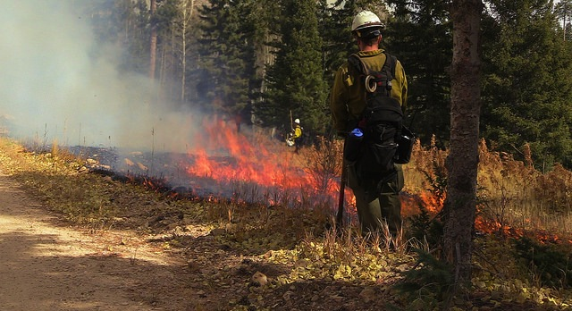 New tools for prescribed fire practitioners