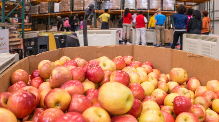 NY farmers donate 9 million pounds of food