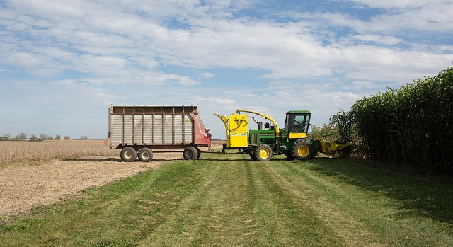 Pioneer sorghum hybrids sweep contest