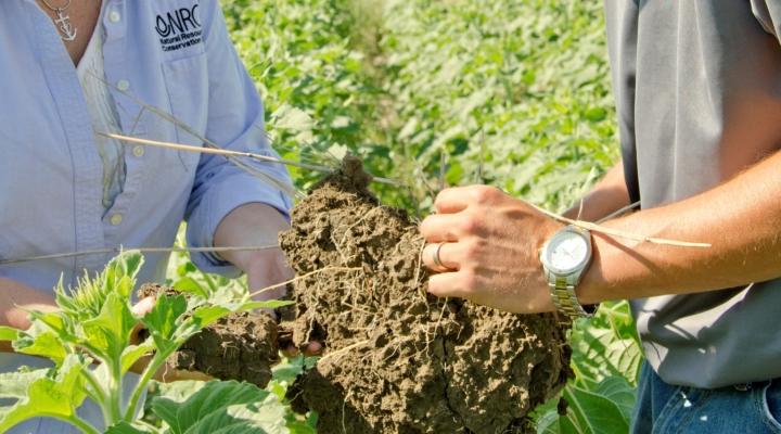 Healthy Soils Program grants announced