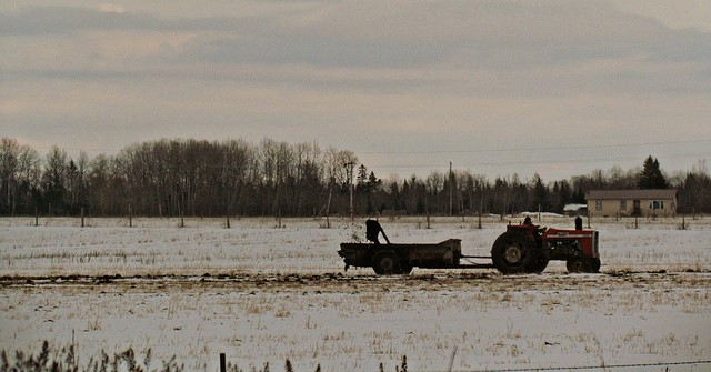 NYS awards $20M for manure management