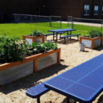 Local schools interested in building a strong team to start or expand a school garden will benefit from a series of five classes offered by Iowa State University Extension and Outreach. (Courtesy of ISU Extension and Outreach)