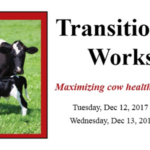 The Transition Cow Workshop, hosted by Professional Dairy Producers® (PDPW), will share the latest research, insights and techniques in nutrition and health management for transition dairy cows. (Courtesy of PDPW)
