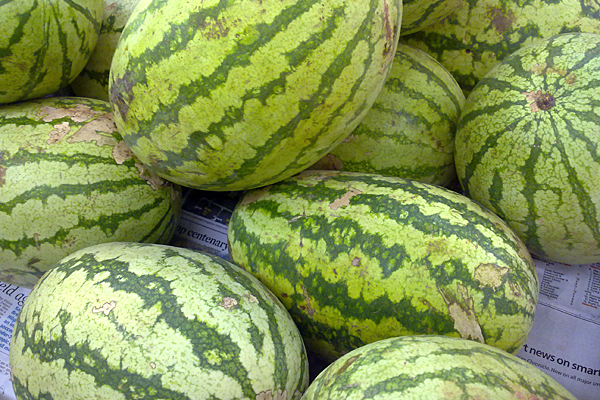 Ind. city prepares for 10th annual watermelon drop