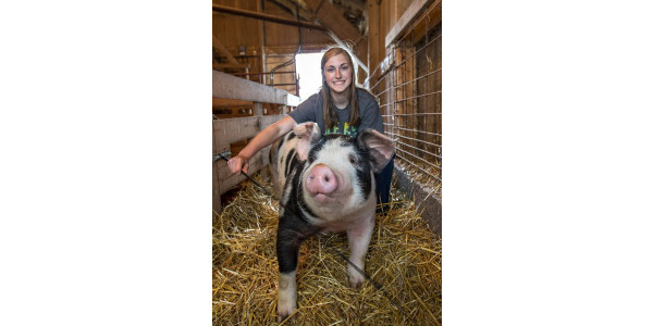Youth Pork Quality Assurance Program rollover info