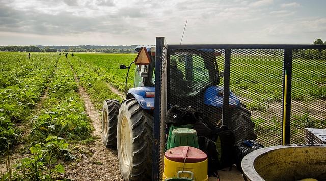 NYFB on farm labor lawsuit dismissal