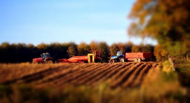 School considers eliminating harvest break