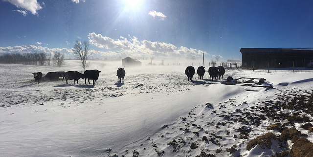 How does cold weather affect agriculture?
