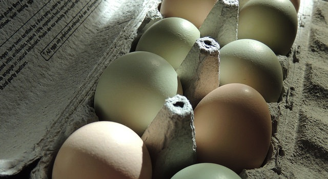 Rule to amend egg product inspections