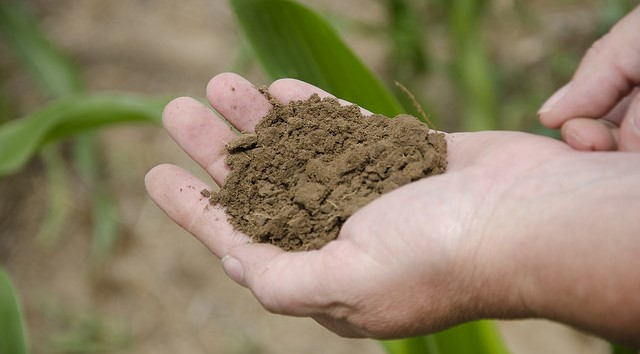 Soil health researchers launch survey in NYS