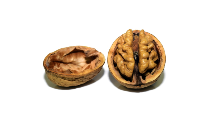New cost and return study for walnuts