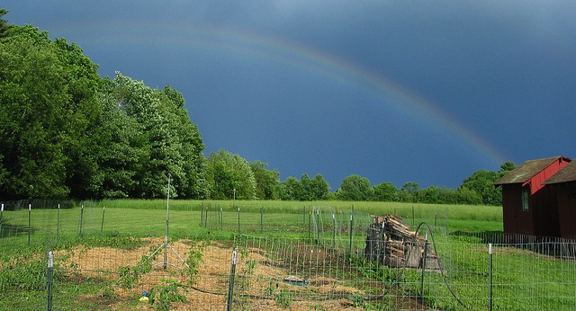 USDA NRCS NH to help protect agricultural lands