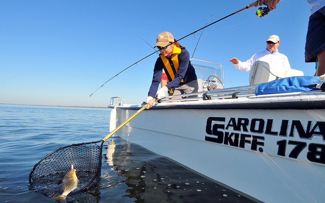 SCDNR urging catch & release to help spotted seatrout recover