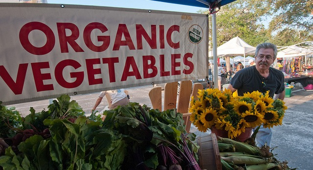 Funding available for organic ag programs