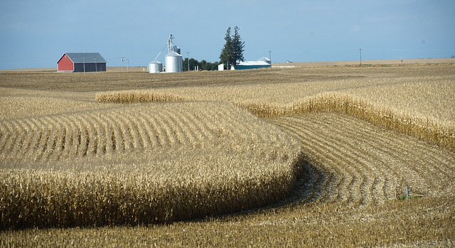Predicting the effect of climate change on crops