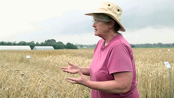 Research project aims to help smaller farms