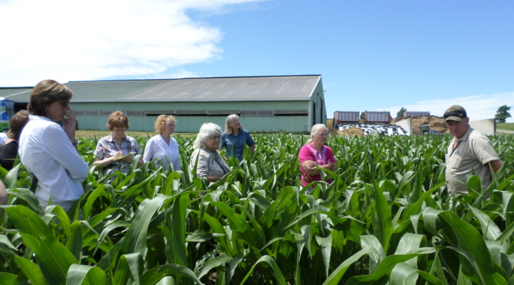Women farm owners invited to Learning Circle
