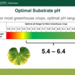 Figure 1. The optimal substrate pH for most greenhouse crops is between 5.4 and 6.4. (Figure by Garrett Owen, MSU Extension)