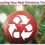 Xmas_Tree-Recycle