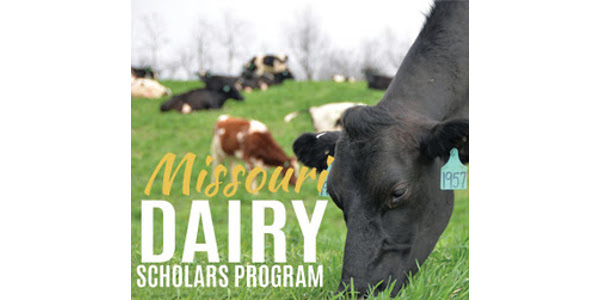 Dairy scholarships available for students