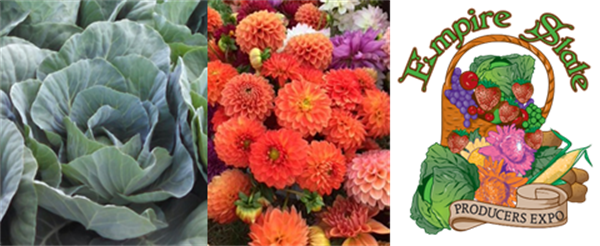 Blooms to brassicas at the NYS Produce Expo