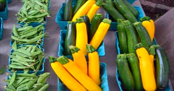 South Jersey health system offers mobile farmers market