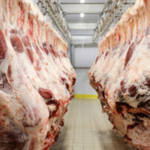 The Meat Processing Facility Investment Tax Credit allows owner/operators to receive a Missouri state tax credit of up to 25 percent of the amount the taxpayer paid in the tax year for meat processing modernization or expansion. (Courtesy of MDA)