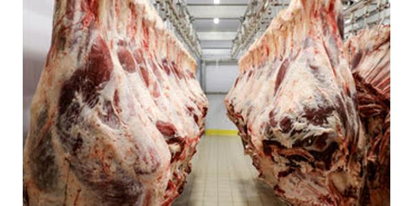 Relief grants for small meat processors