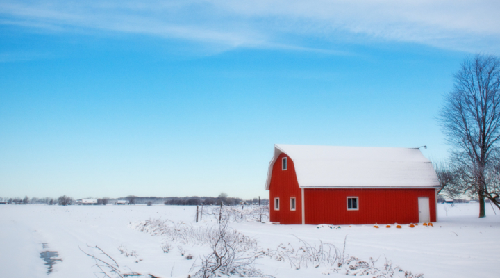 Snow removal advice from PRO-DAIRY