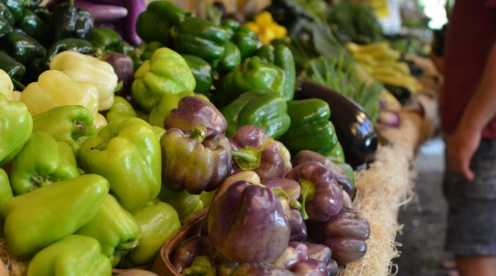 Summit covers local foods for institutions