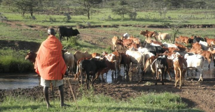 New model for evaluating rangeland systems
