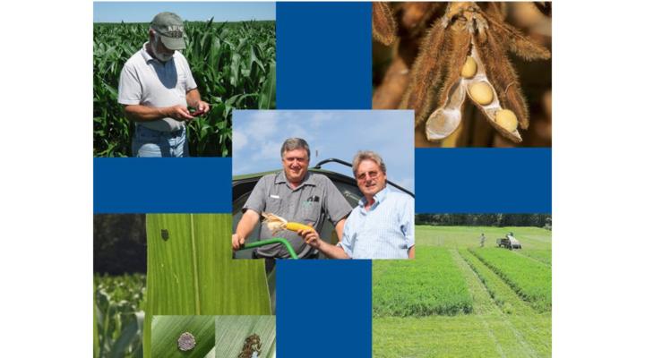 NNYADP posts annual report, project summaries