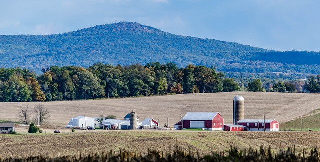 Farm Credit East pays $60M in patronage dividends
