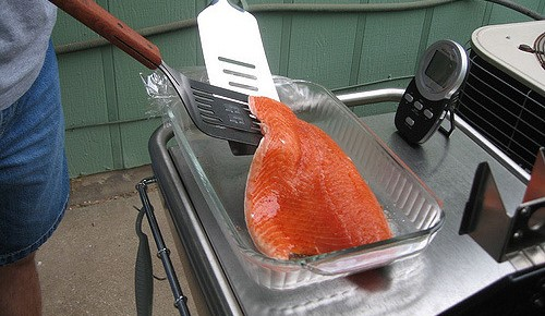 Backers of giant salmon farm to meet public