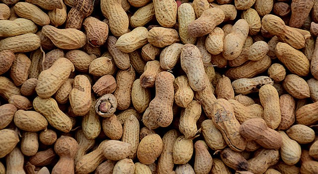 4 state peanut organizations seek nominees