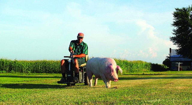 Support announced for farmers with disabilities