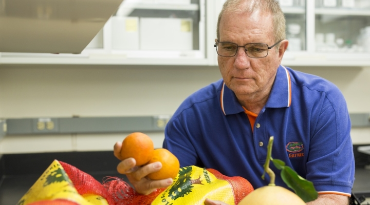 Ancient gene may help the citrus industry