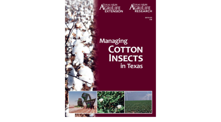 Cotton Insect Management Guide now available