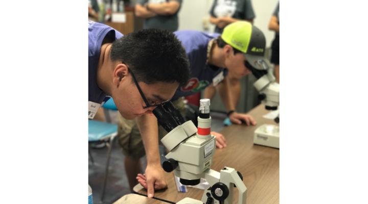 UF science camp seeks high school applicants