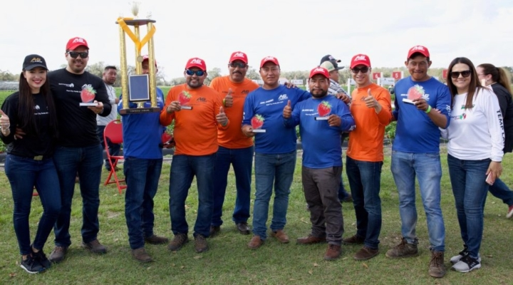 5th Annual Strawberry Picking Challenge