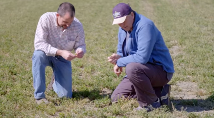 UC launches drought video series