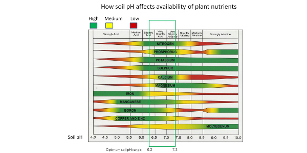How soil pH affects availability of plant nutrients. (UMN Extension)