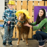 Donate to rescue horses at Harmony Equine Center and have your photo taken with adorable minis wearing hats & tiaras. (Photograph by Richard Gill)