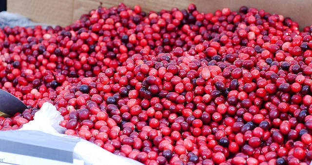 Cranberries could face major tariff on exports