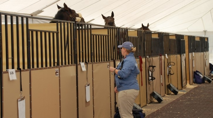 Relieving veterinarian shortage situations