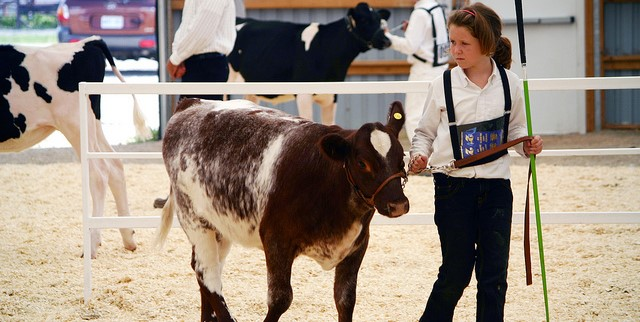 OKFB sponsors ag youth at OYE Sale of Champions